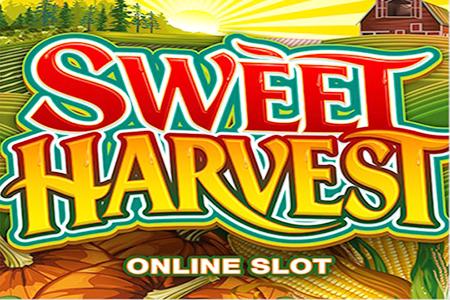 book of ra online casino crazy slots casino