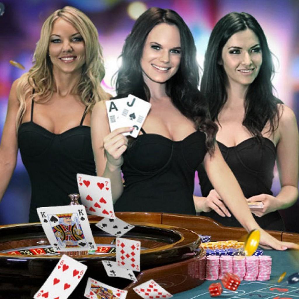 Panned which casino biffs casino