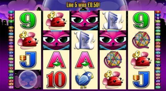 Miss Kitty is a new slot game from Aristocratic Online with 5 reels and 50 winning paylines. This game is so new that it is just being unrolled at online casinos this week! Miss Kitty is all about the love of cats and all things feline.