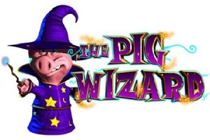 The Pig Wizard Slot Pays Player £437,706 Progressive Jackpot