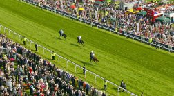 Bookmakers Facing 10% Levy on UK Horse Racing