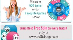 Wallis Bingo Offers Rewarding Online Bingo Games