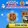 Doves Bingo Takes Bingo To the Skies