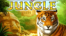 Golden Jungle Slot Features Numerous Wild Reels