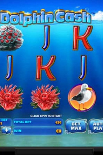 dolphin-cash-slot-game