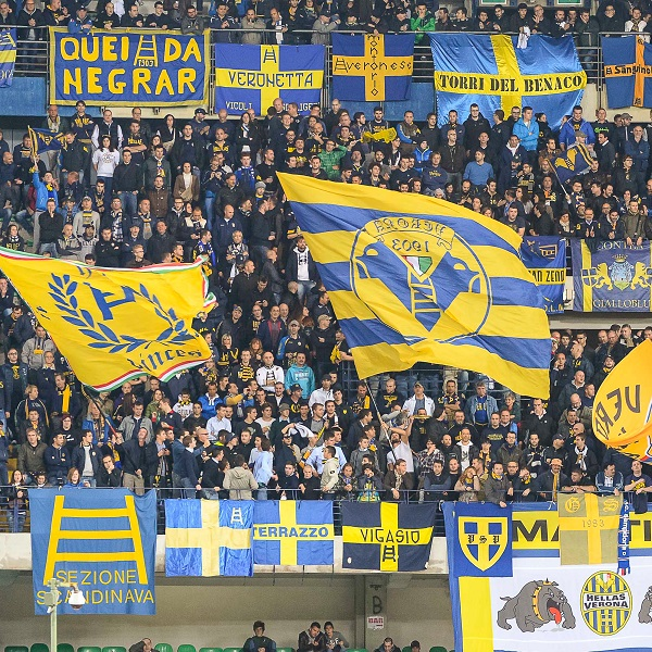 njsbl league line up verona - photo#35
