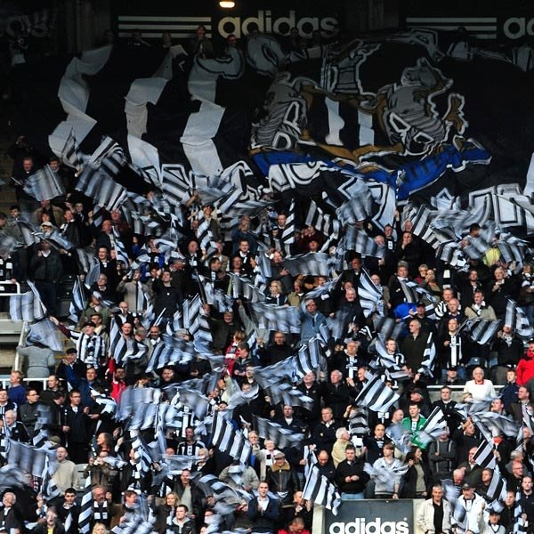 Newcastle United vs Brighton & Hove Albion Preview and Line Up Prediction: Draw 1-1 at 11/2