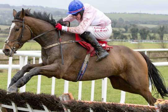 Jim Dreaper Believes Goonyella can win Irish Grand National