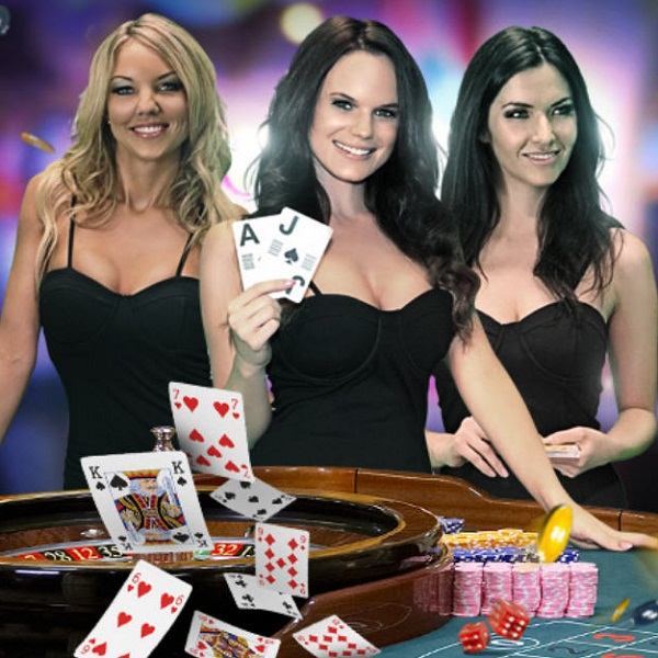 How to Choose the Best Live Dealer Casinos