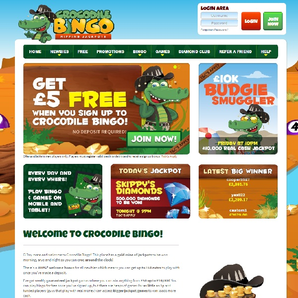 Crocodile Bingo Will Put a Smile on Your Face