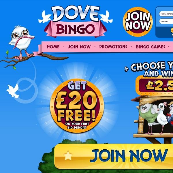 Doves Bingo Takes Bingo To the Skies