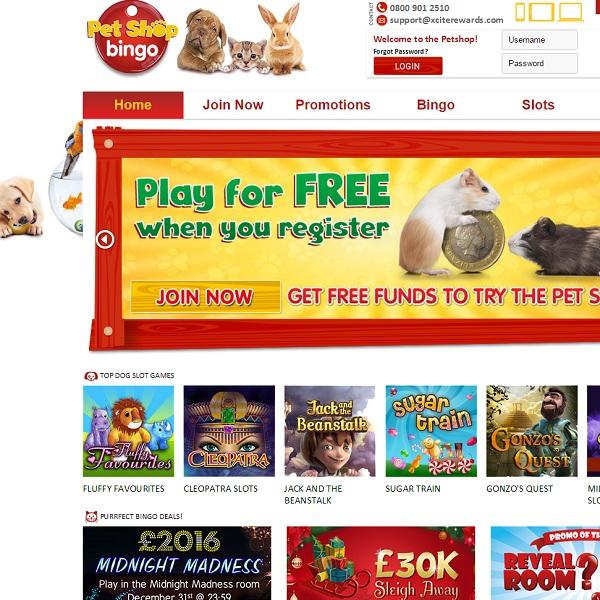 Pet Shop Bingo Combines Bingo with Cute Animals