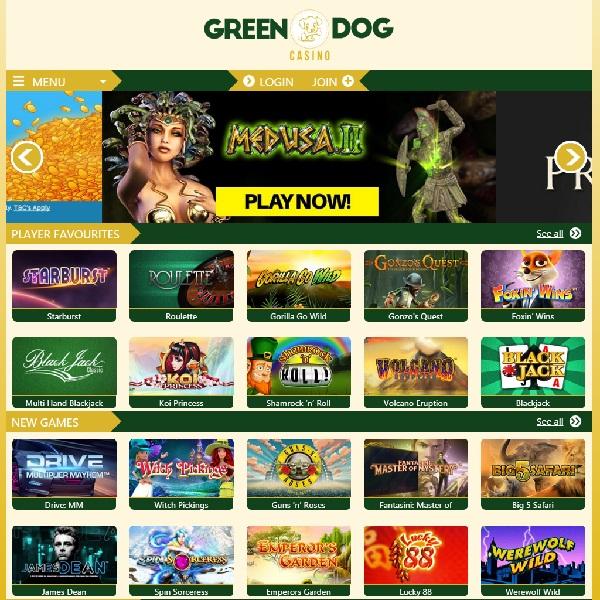 Green Dog Casino Provides Endless Gambling Fun