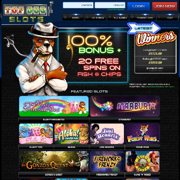 Top Dog Slots Casino Brings Over 200 Top Slots