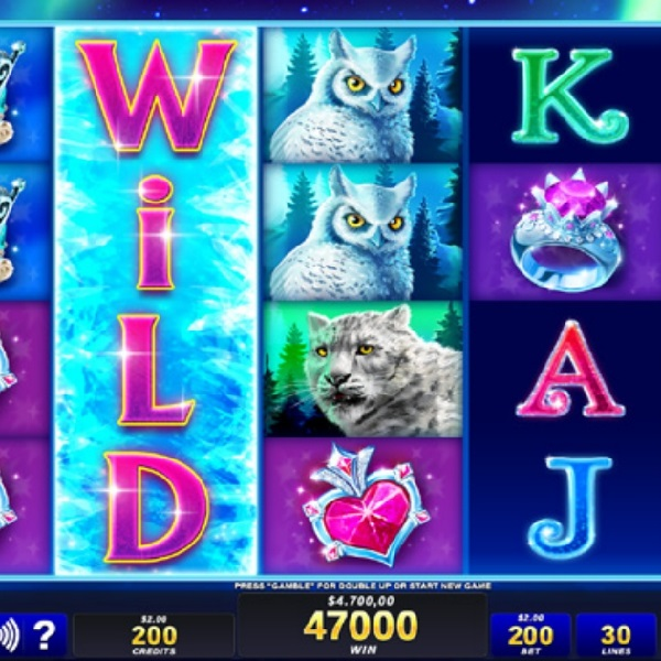 Icy Wilds Slot Brings You Six Potential Stacks of Wilds