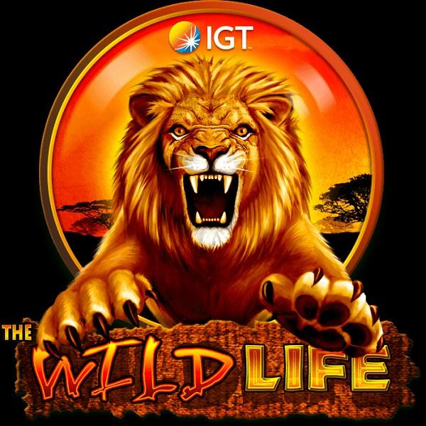 The Wild Life Slot Takes You on Safari