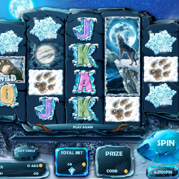 Siberian Wolf Slot Takes You Into the Wilderness