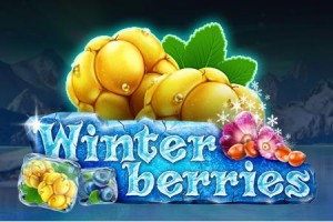 Winterberries Slot Released by Yggdrasil