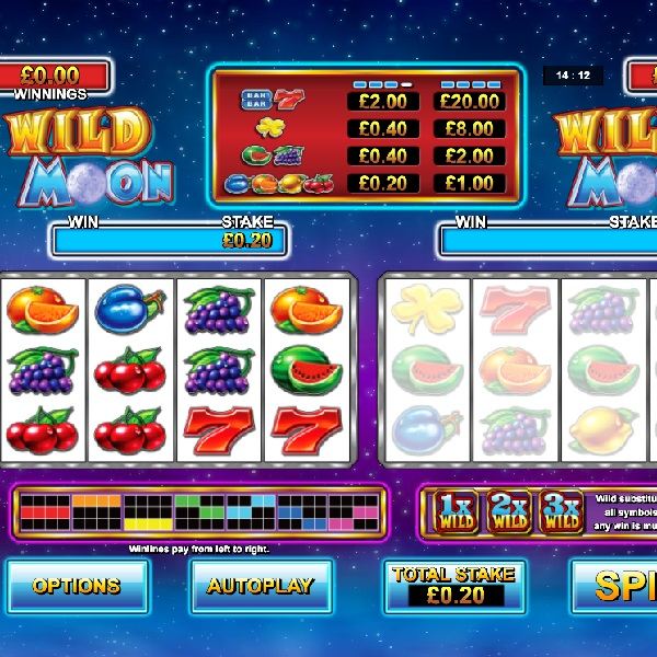 Wild Moon Slots Features Two Sets of Reels