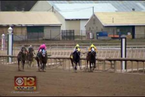 Slots Revenue Allows Maryland Horse Industry to Thrive