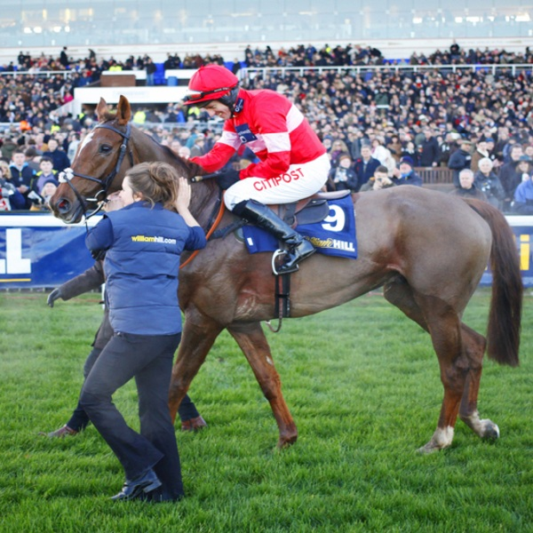 William Hill Issues Profit Warning After Disappointing Cheltenham