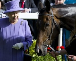 Queen's Racehorse Tests Positive For Banned Substance
