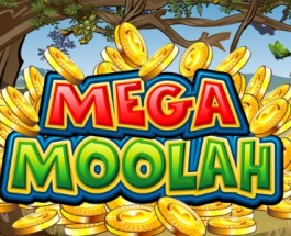 Mega Moolah Jackpot of €1,058,541.88 Waiting to Be Won