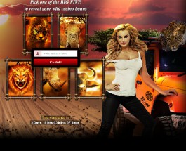 Win An African Safari Holiday at Wild Jack Casino