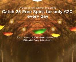 Enjoy 25 Daily Free Spins at Mr Green Casino