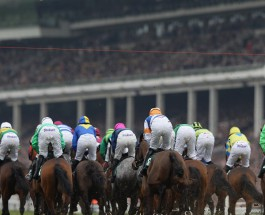Cheltenham Race Day 4: Betting Tips for Races 1-4