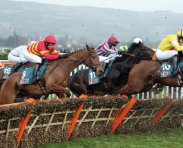 Cheltenham Race Day 2: Betting Tips for Races 4-7
