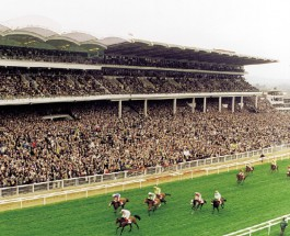 Cheltenham Race Day 3: Betting Tips for Races 4-6