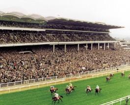 Cheltenham Race Day 3: Betting Tips for Races 4-6