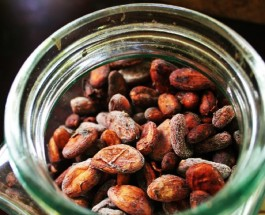 Cocoa Prices Rise Due to Ebola Fears