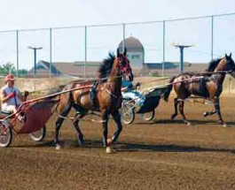 Illinois Racing Faces Funding Crisis