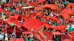 Morocco vs Netherlands Preview and Line Up Prediction: Draw 1-1 at 6/1