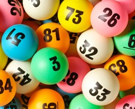 Lotto Raffle Results for Wednesday November 5