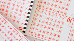 $1M Monday Lotto Results for Monday June 26