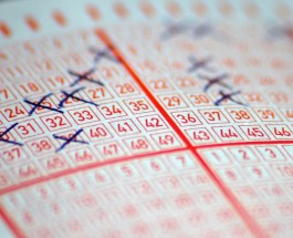 Saturday Lotto Results: Winning Numbers for $4M Draw Sat, 22 Nov 2014
