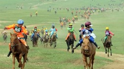 Mongolian Government Considers Legalisation of Horse Racing and Gambling