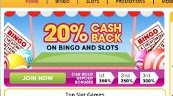 New Bingo Site: Carboot Bingo Opens Powered by Cozy Games