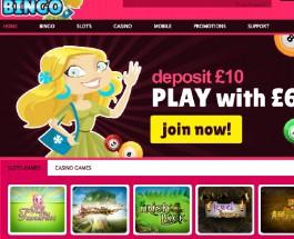 Hunnie Bingo Launches with 500% Welcome Bonus