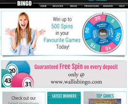Wallis Bingo Offers Rewarding Online Bingo Games