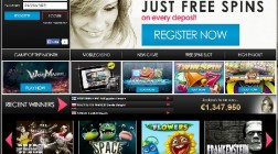 The Free Spins Casino Launches for Slots Enthusiasts