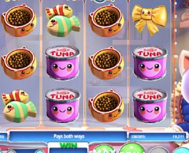 Kawaii Kitty Slot Is Packed Full of Cuteness