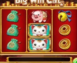 Big Win Cat Slots Takes You Shopping for Big wins