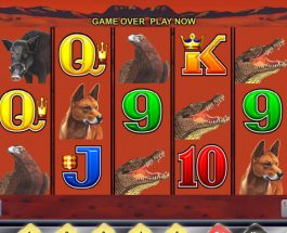 Big Red Slot Takes You on an Outback Adventure