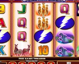 Silver Lion Slot Transports You to Africa for Free Spins