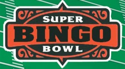 Spice Up the Super Bowl with Bingo