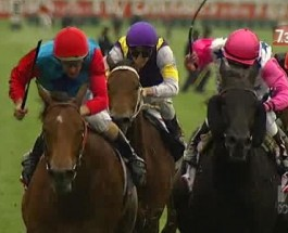 Racecards Likely to Be Affected As More Horses Test Positive for Morphine